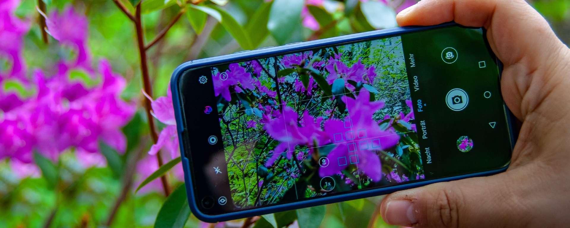 social media and gardening